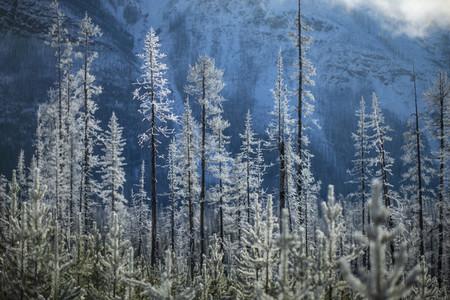 Snowy Mountain Scenes 02