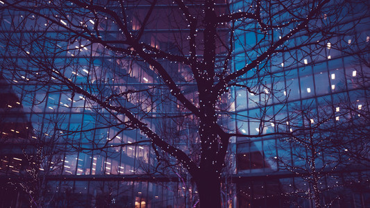 Christmas tree lights in city of London business office building