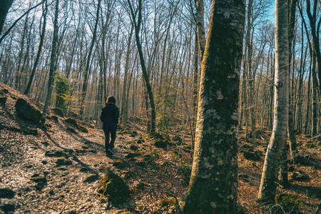 A girl walking in an autumnal landscape
