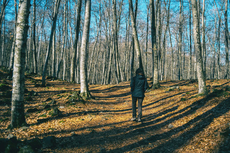 A girl hiking through the shadows of the trees