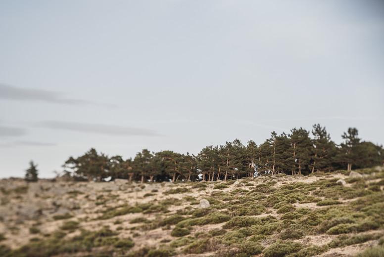 Deserted valley in sunny landscape