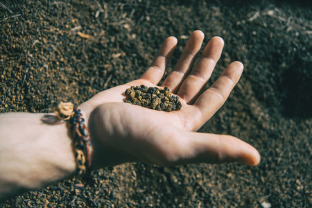 Close up of some volcanic soil held by a human hand