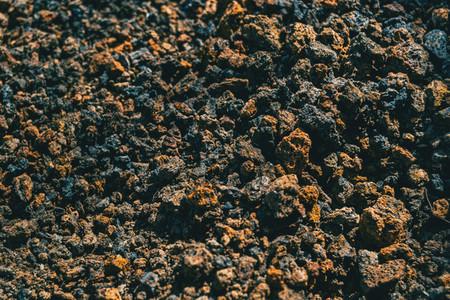 Detail of volcanic soil