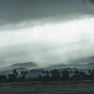 Rainy Savanah