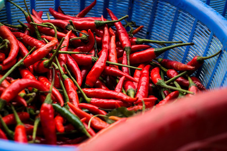 Hot chilli peppers in basket