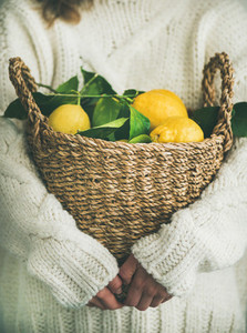 Woman in white woolen sweater holding basket of fresh lemons