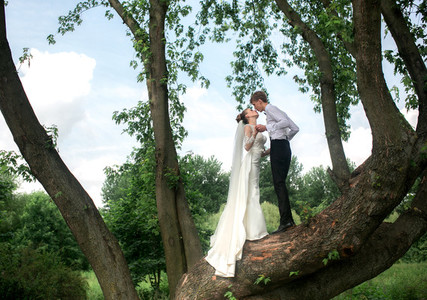 Bride and groom on the tree