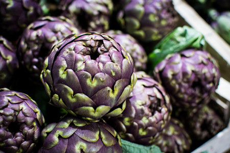 Organic purple artichoke