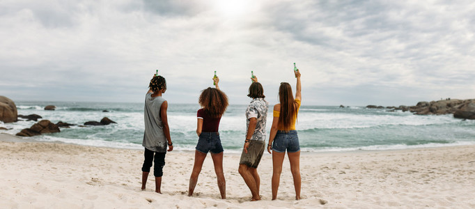 Group of friends toasting beers with sea