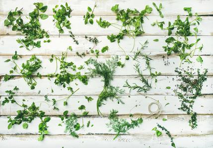 Various fresh green kitchen herbs