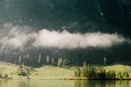views of forest in the mountain among fog in border of the lake