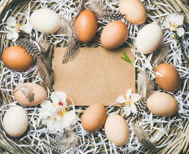 Easter background with eggs  flowers and feathers  copy space