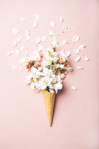 Waffle cone with white almond blossom flowers