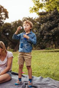 Little boy having fun on picnic at the park