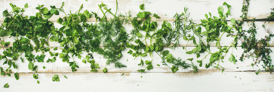 Various fresh green kitchen herbs for healthy vegan cooking