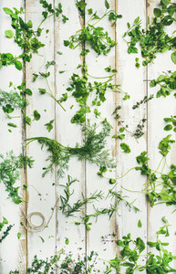 Various fresh green kitchen herbs for healthy cooking