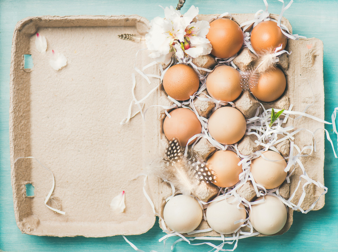 Natural colored eggs for Easter in box  blue background