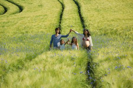 Family Fields 38