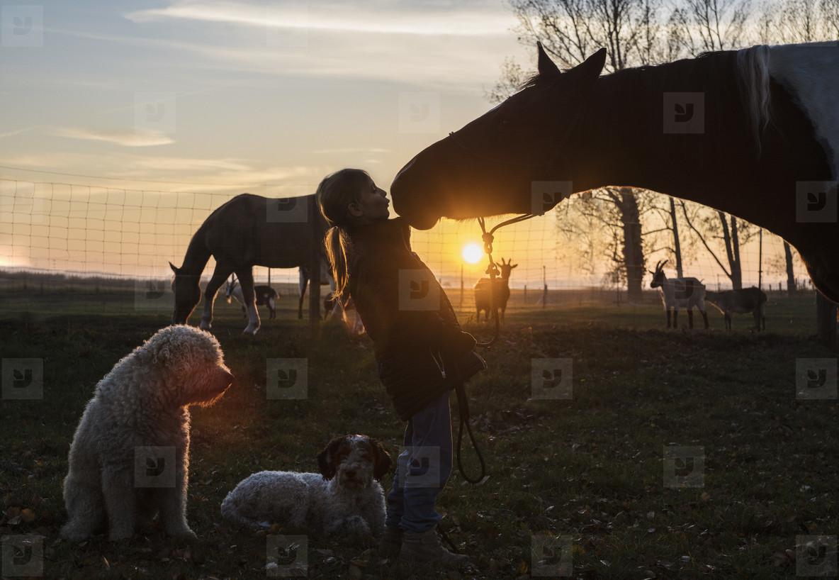 Cross Country Farm  06