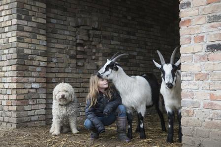 Cross Country Farm 29