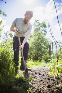 Urban Gardening 01