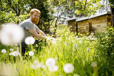 Urban Gardening 02