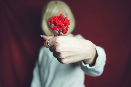 Young woman holding a little red tree