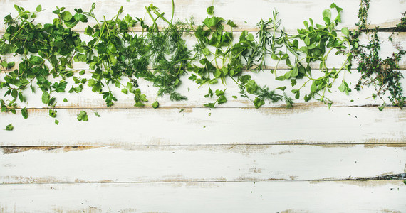 Various fresh green kitchen herbs for healthy cooking  copy space