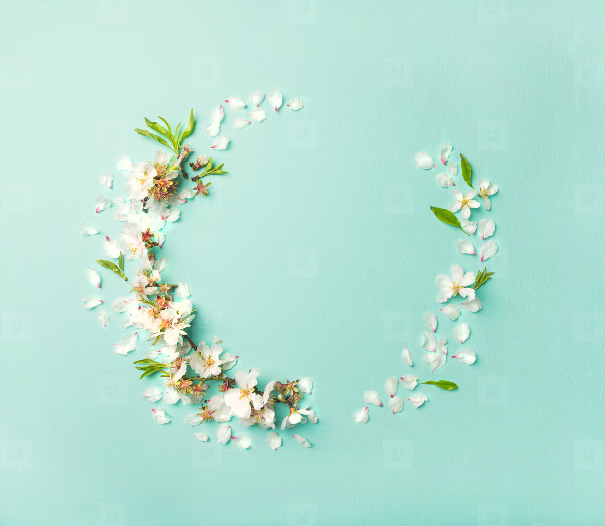 Flat lay of white almond blossom flowers wreath