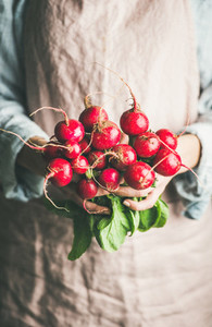Female farmer in apron holding bunch of radish