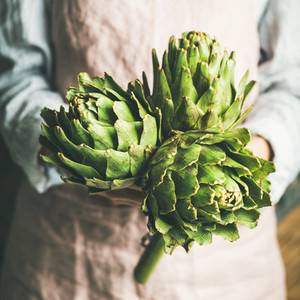 Female farmer in apron holding fresh artichokes  square crop
