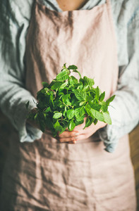Female farmer holding bunch of fresh green mint  selective focus