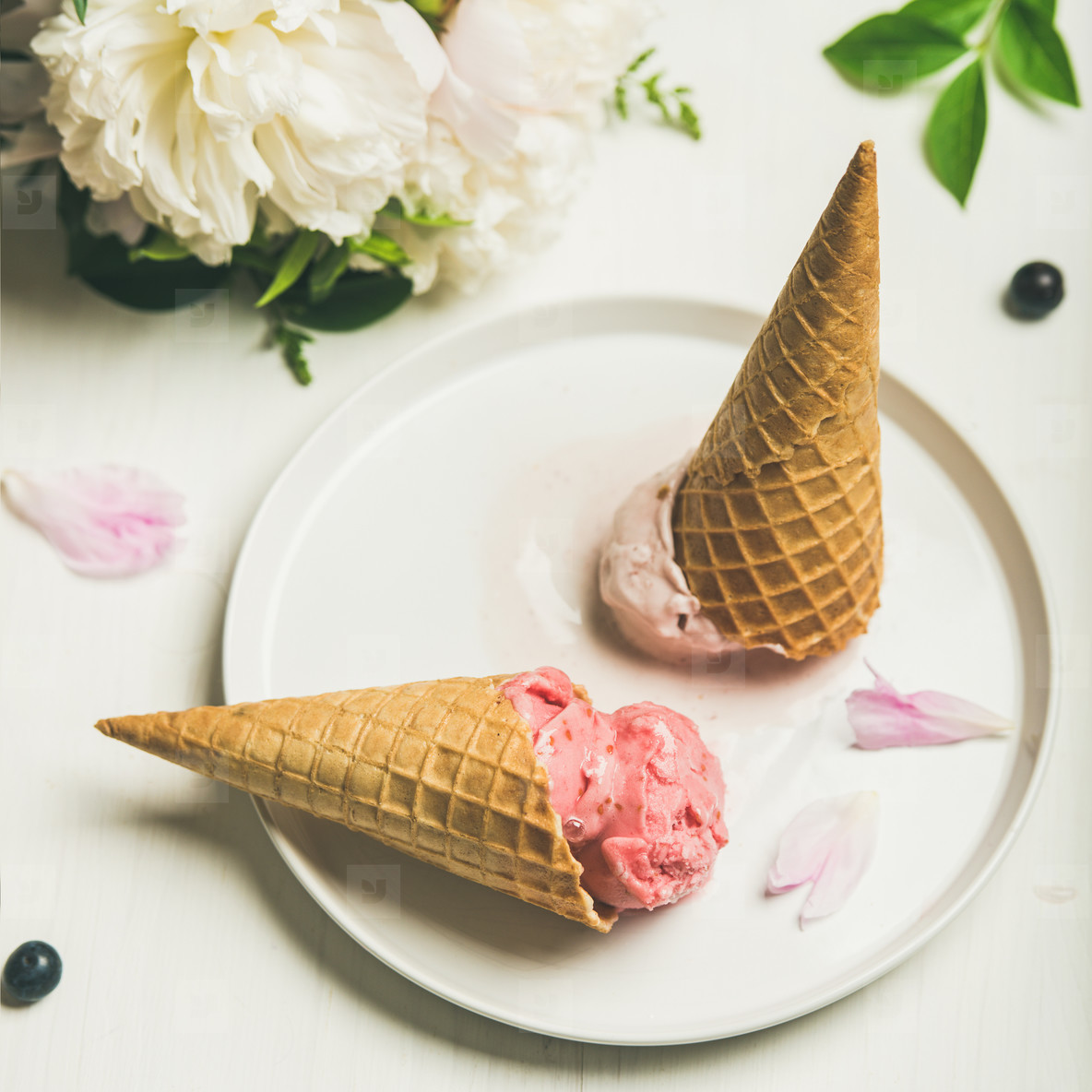 Ice cream scoops and peonies over white background  square crop