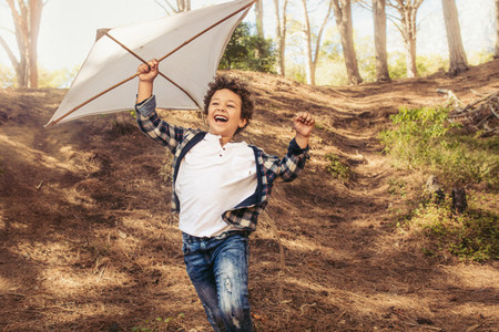 Boy enjoying flying a kite