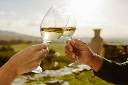 Couple toasting white wine in a vine yard