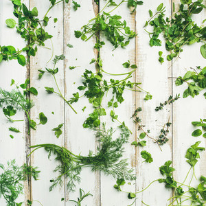Various fresh green kitchen herbs for healthy cooking square crop