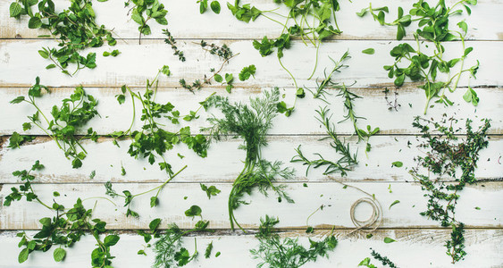 Various fresh green kitchen herbs for healthy cooking wide composition