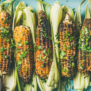 Flat lay of grilled sweet corn with spices square crop