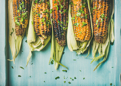 Grilled sweet corn with pesto sauce and herb  copy space