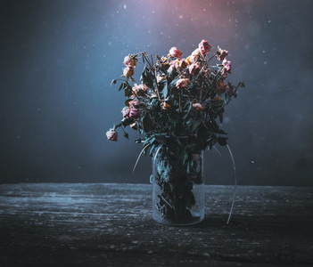 Dried bunch of roses in a vase on a wooden table on a black and blue background  Concept dead flowers