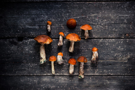 Collection of brown mushrooms on a wooden old board