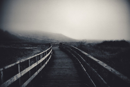 path to fog