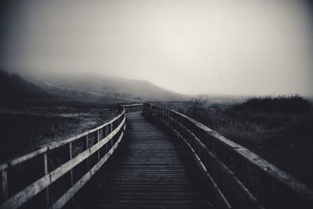 path to fog