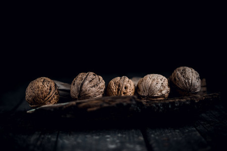 Healthy walnuts on the bark of a tree and the background of an old tree