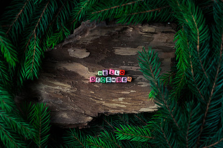 Colored small letters of cubes decoration on a wooden background with branches of a Christmas tree  Concept Hello December