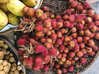 Red hairy rambutan close up