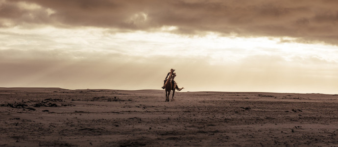 Female riding her stallion at the sea shore