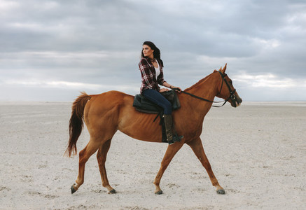 Beautiful woman riding a horse in evening