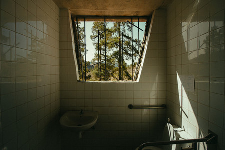 Bathroom in the forest