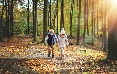 Two kids wandering in the autumn forest